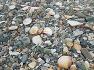 구룡포해수욕장의 모래가 사라졌다!
