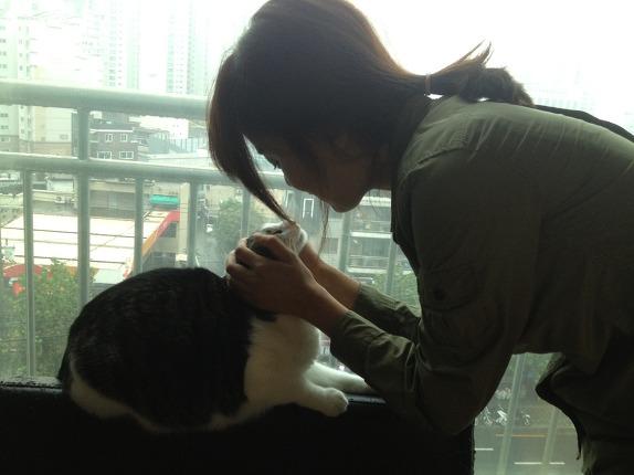 고양이처럼 먹고 기도하고 사랑하라