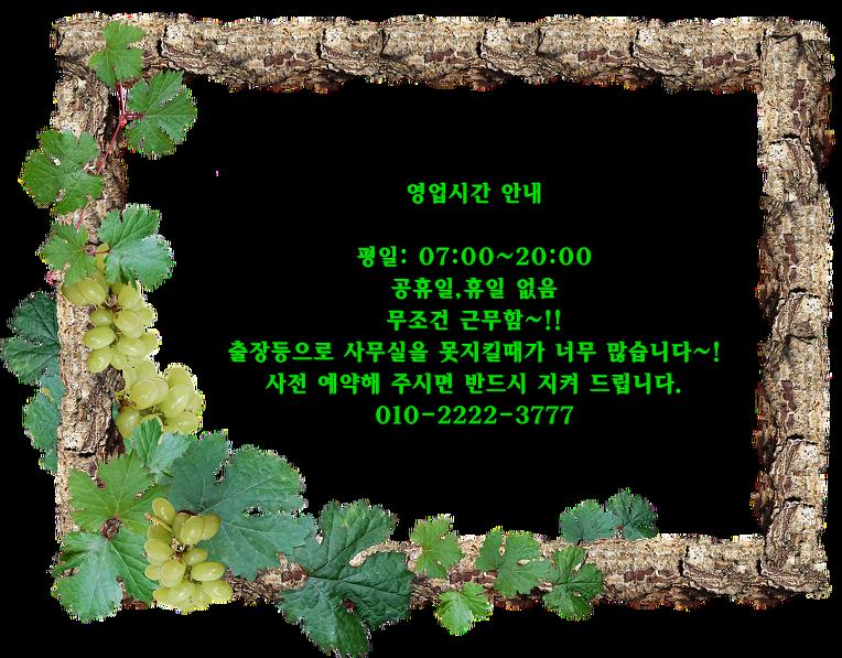 금니가격/ 금니시세/ 금니매입 7월 20일 가격 정보